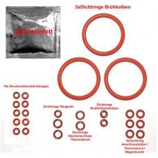 Ремкомплект ЗУ, поршня термоблока DeLonghi ESAM + смазка 100520